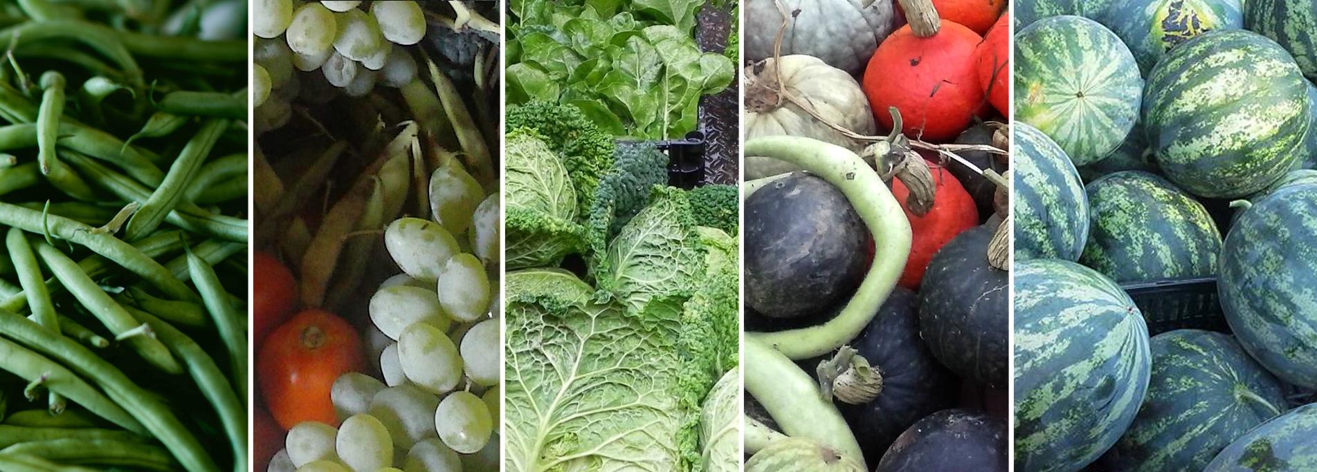 Mercato agricolo di Abbiategrasso