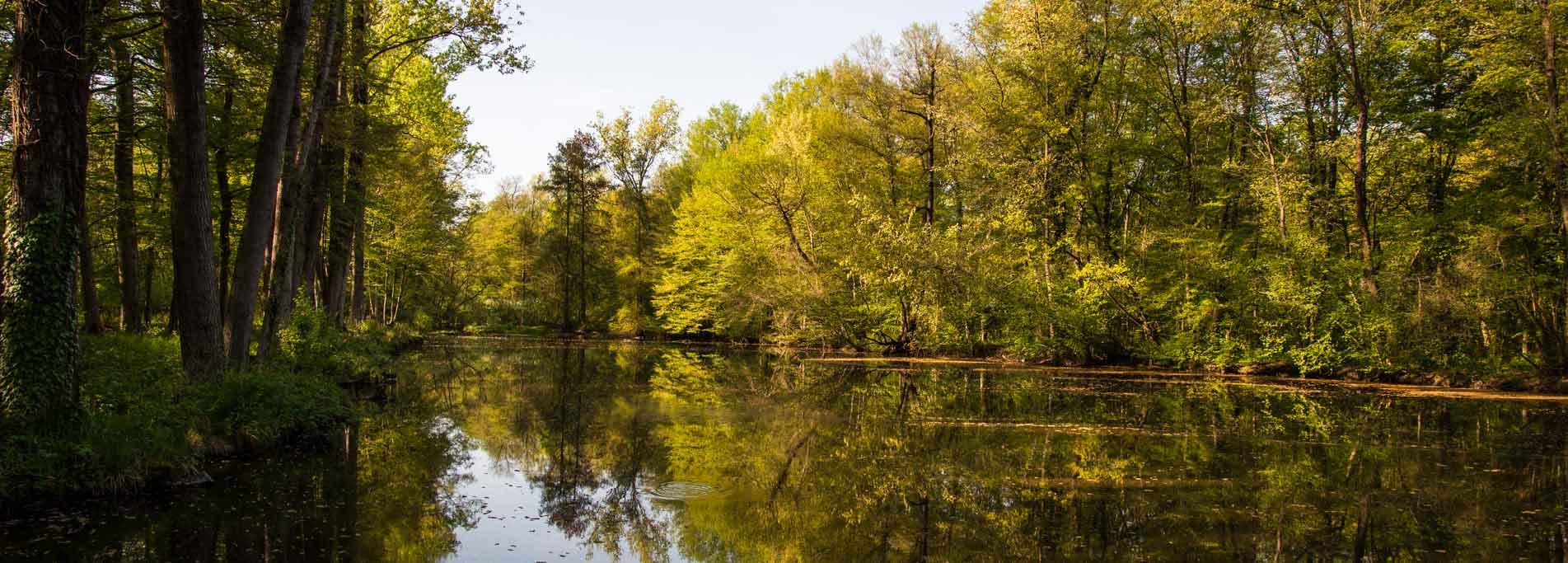 Escursione Naturalistica alla Riserva Salvaraja