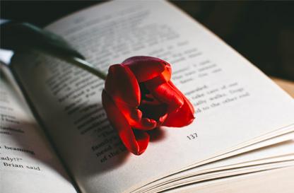 Le domeniche letterarie