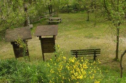Area Naturalistica Le Ginestre di Oleggio