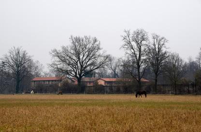 Agriturismo La Forestina di Cisliano