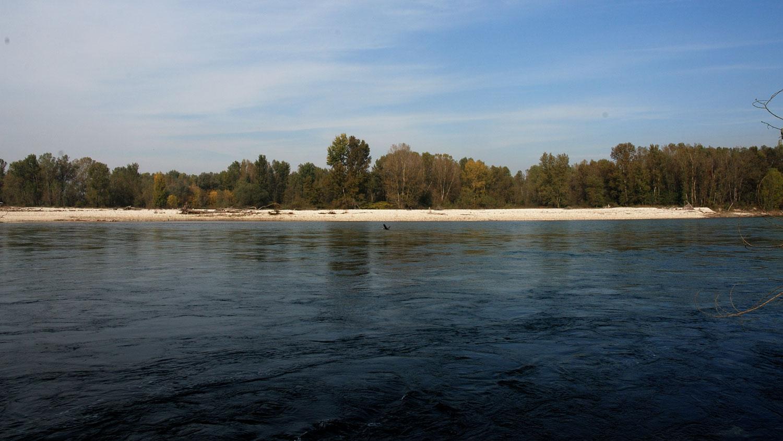 fiume Ticino