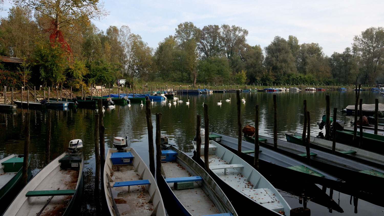 Darsena delle barche - Lanca Ayala