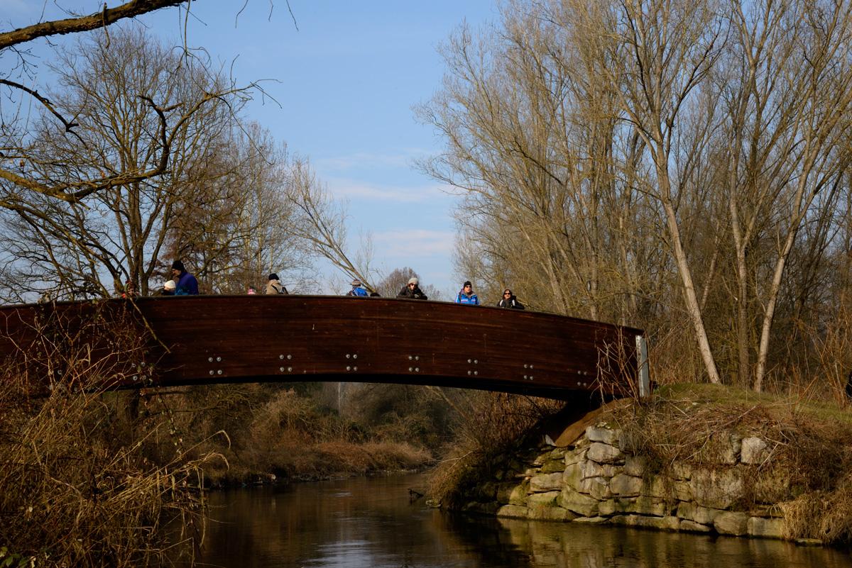 Ponte sul ramo dei prati - Percorsi al Parco Mandelli