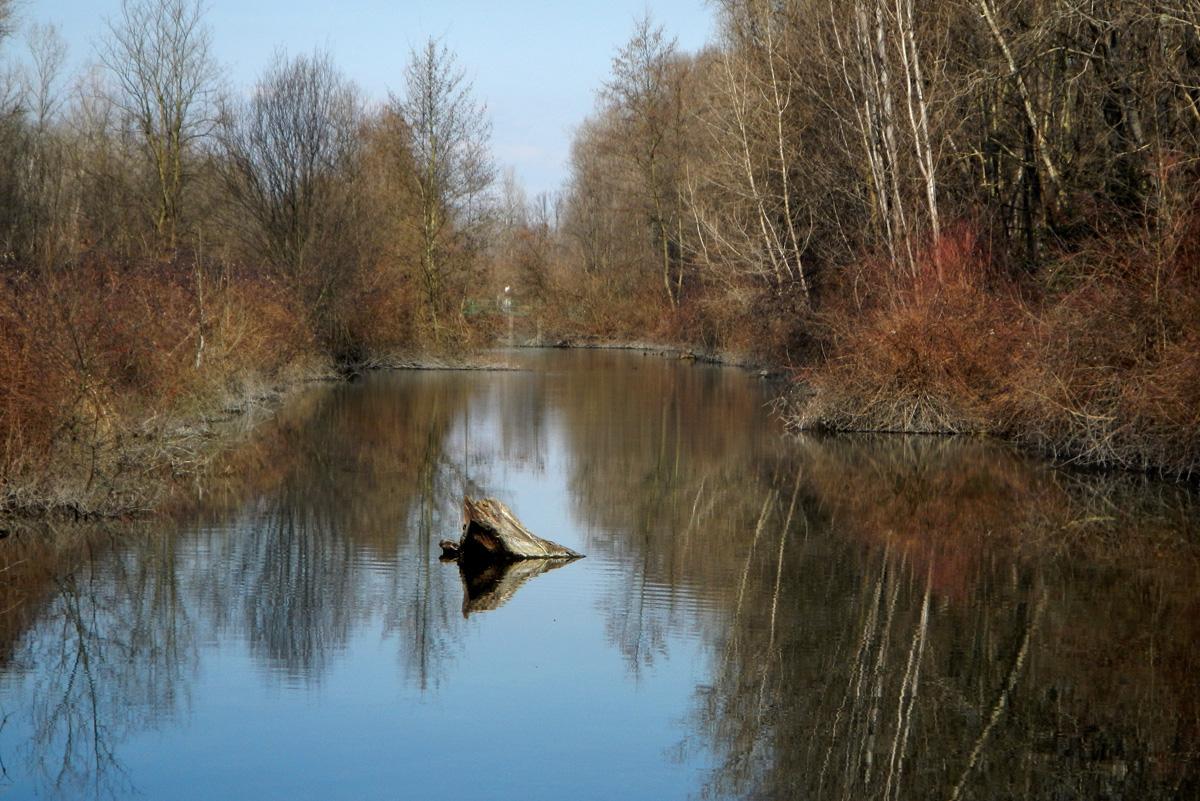 Vasche storioni - Percorsi al Parco Mandelli
