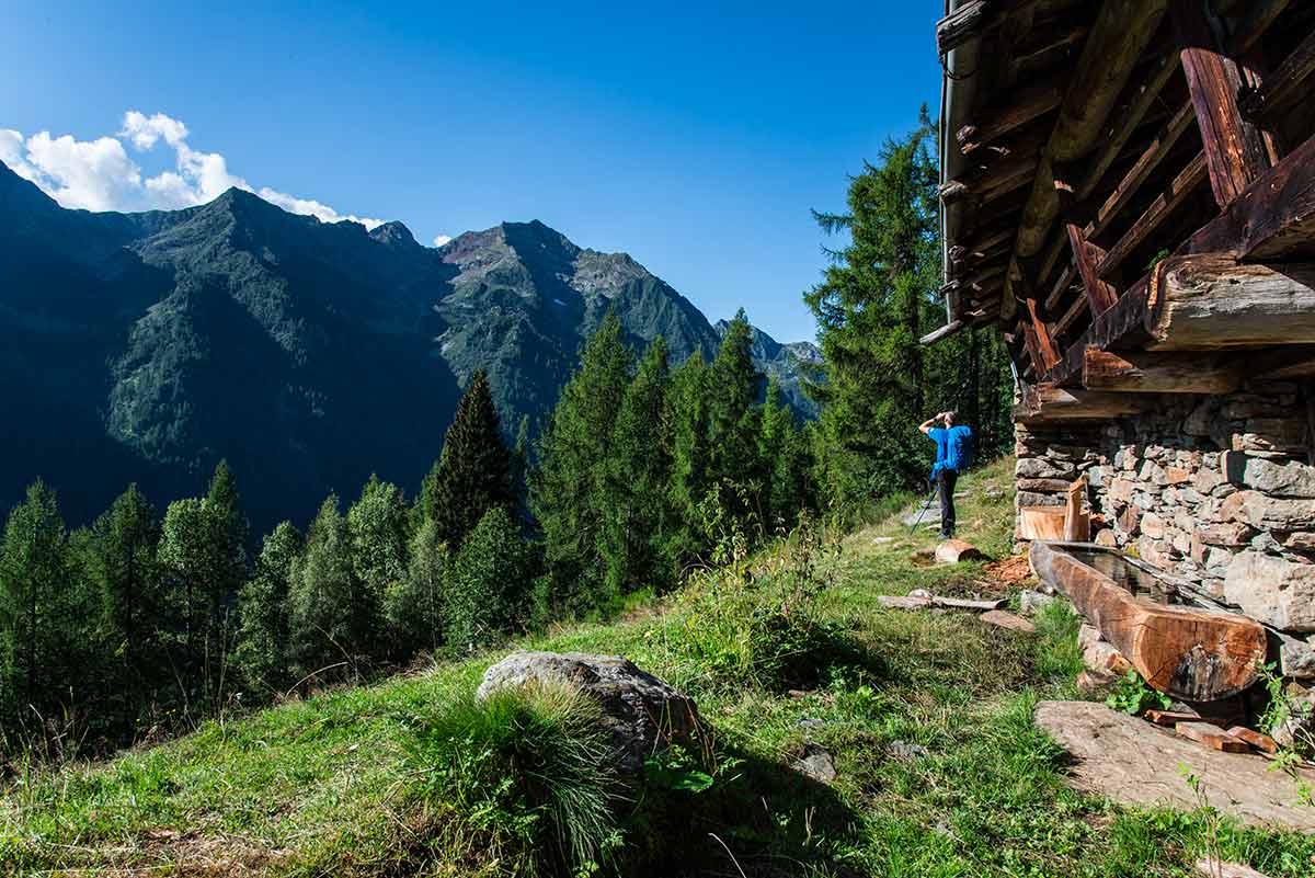 Alpe Poese - Cima Mutta