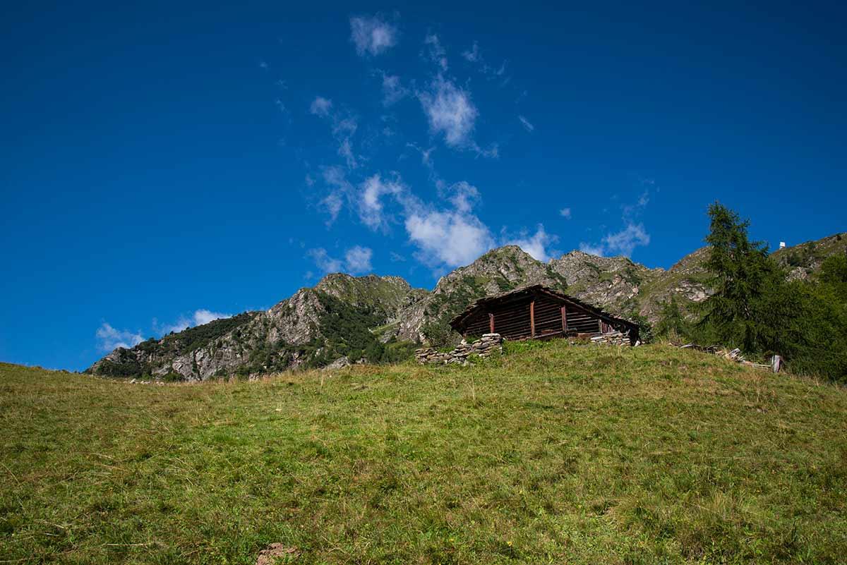 Alpe le Piane - Cima Mutta
