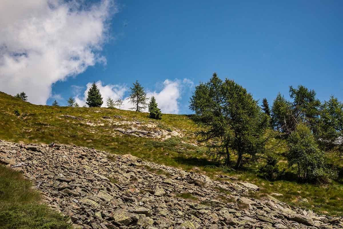 Cima Mutta - verso la cima